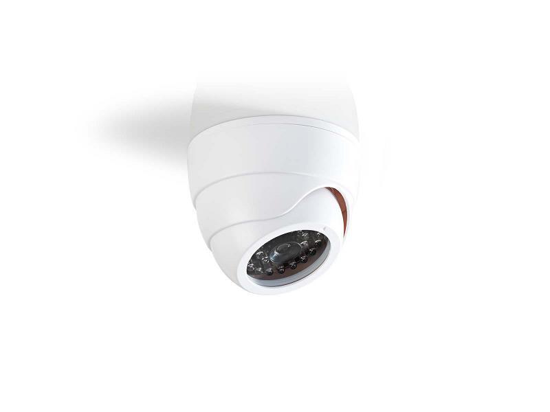 Nedis DUMCD30WT Dummy beveiligingscamera   Dome   Wit